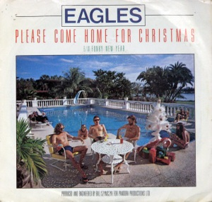 Eagleshomeforchristmas_3